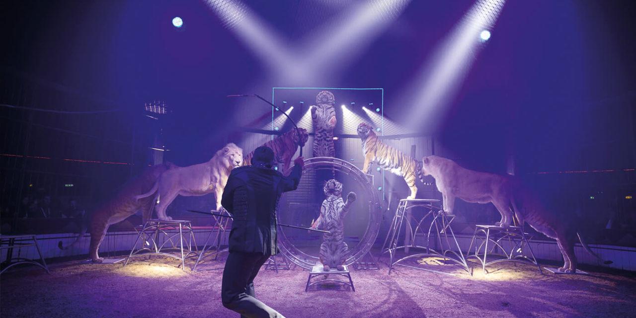 27e Festival international du cirque de Massy