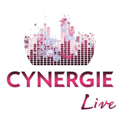 CYNERGIE SONORISATION LIVE