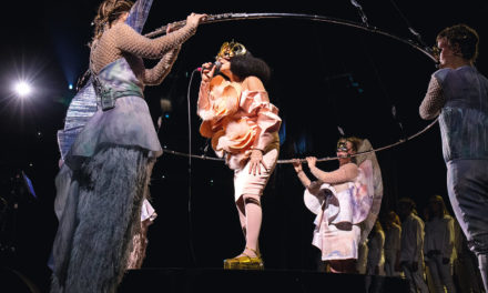 d&Björk