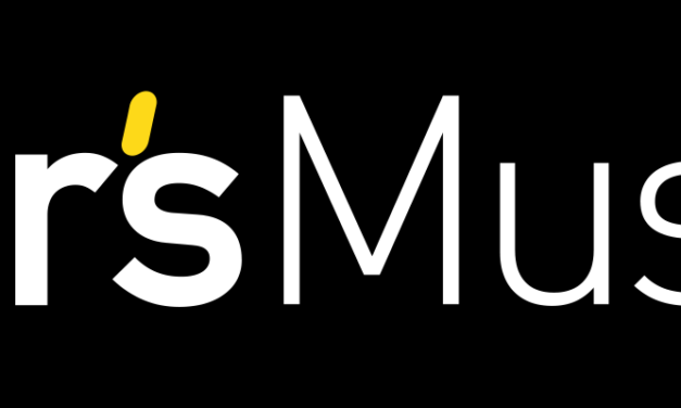 STAR'S MUSIC RECRUTE UN RESPONSABLE COMMERCIAL SONORISATION (H/F)